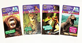 Really Wild Animals Collection (4pk): Swinging Safari, Monkey Business, Totally Tropical Rainforest, Dinosaurs and Other Creature Features