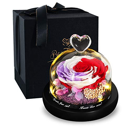 Eternal Rose- Preserved Flower Rose Handmade Fresh Flower Rose with Beautiful Creative Gift for Valentine's Day Mother's Day Christmas Anniversary Birthday Thanksgiving Girl (Colourful Rose)