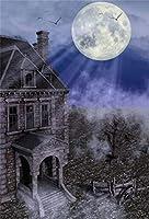 Qinunipoto 背景布 ハロウィン happy halloween 写真の背景 古代の城 とんでもない土地 丸い月 背景幕 写真背景 人物撮影 自宅 写真館 撮影用 cosplay背景 写真ブース撮影 小道具 ビニール 2.5x3m