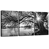 sechars - Canvas Prints Wall Art Black and White Tree in Sunrise Canvas Wall Art Lake Landscape Picture Giclee Print on Canvas Framed and Ready to Hang Modern Home Ofiice Wall Decor - 48'x24'overal