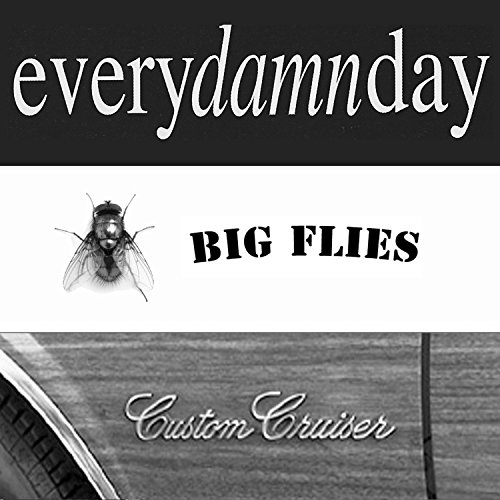 Big Flies/custom Cruiser (Deluxe Digital Edition)