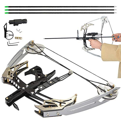 AMEYXGS Archery Mini Compound Bow and Arrows Set 25lbs Complete Compound Bow Arrow Package Set Entry Level Compound Bow Kit Left and Right Hand for Outdoor Bow Hunting Fishing