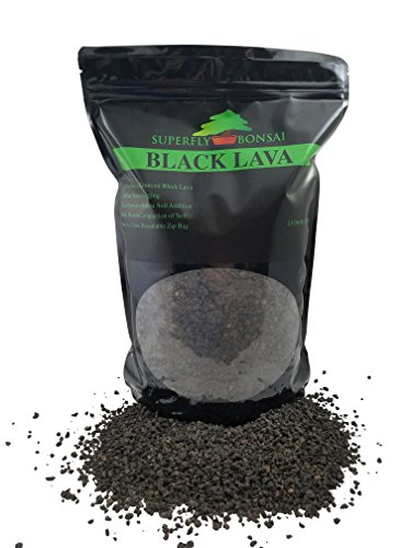 Black Lava for Bonsai - Sifted and Ready to Use - Can Also Be Used As an Additive for Bonsai Soil in Easy Zip Bag - (2.5 Dry Quart) (Sieved 1/8' - 1/4')