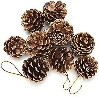 Urvi Creations 12 Pcs Pine Cone Fruits Christmas Tree Ornaments Xmas Tree hangings Christmas Tree decorationOrnaments