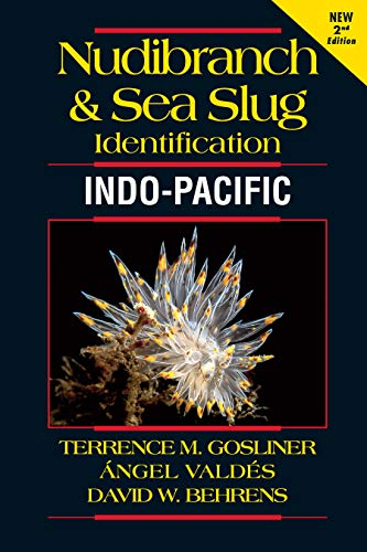 Nudibranch and Sea Slug Identification Indo-Pacific