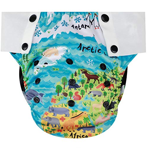 HappyEndings Toddler/Kid Pull On Reusable Cloth Diapers/Training Pants Special Needs Incontinence (Medium: Fits 35-50 Pounds)1 Fish, 2 Fish)