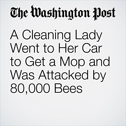 A Cleaning Lady Went to Her Car to Get a Mop and Was Attacked by 80,000 Bees copertina