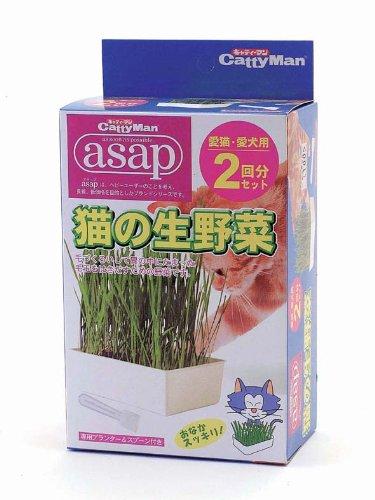 キャティーマン『asap猫の生野菜』