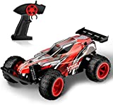 Rabing RC Car Offroad Truck Electric Race Controlled Car Remote Control 2.4Ghz 2 WD High Speed 1:22 Radio...
