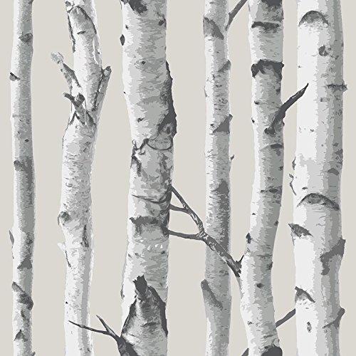 NuWallpaper NU1650 Birch Tree Peel and Stick Wallpaper, Taupe