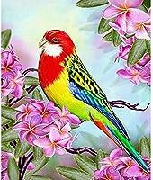 5DダイヤモンドDIYダイヤモンド絵画キット石の花と鳥の刺繡針仕事工芸品装飾品クロスステッチキットギフト