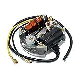 Zündung Maxtuned 6V 17W für Hercules Mofa Prima 2/3 / 4/5 / Sachs 505