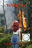 Wildfire (Behind the Camera Book 2)