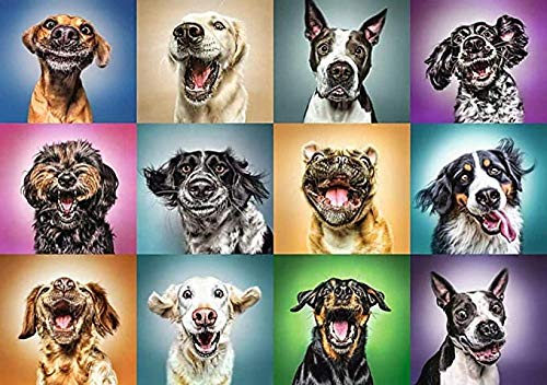 Puzzle 1000 Piece Jigsaw Puzzle for Adults,Bzdthh,Funny Dog Portraits,Every Piece is Unique,Pieces Fit Together Perfectly