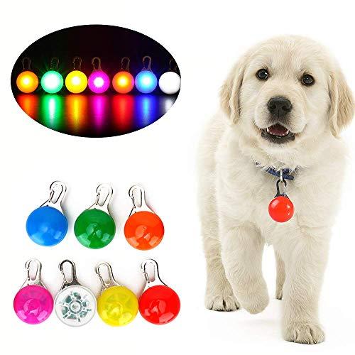 Wodondog Collar LED Gatos Perro, Luz Collar Luminoso Perro 7 Luces de Colores de Seguridad Luminoso Impermeable para Mascotas por Caminar por la Noche