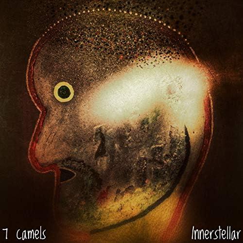 7 camels