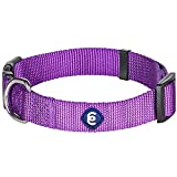 Blueberry Pet Essentials 22 Colors Classic Dog Collar, Dark Orchid, Medium, Neck 14.5'-20', Nylon...