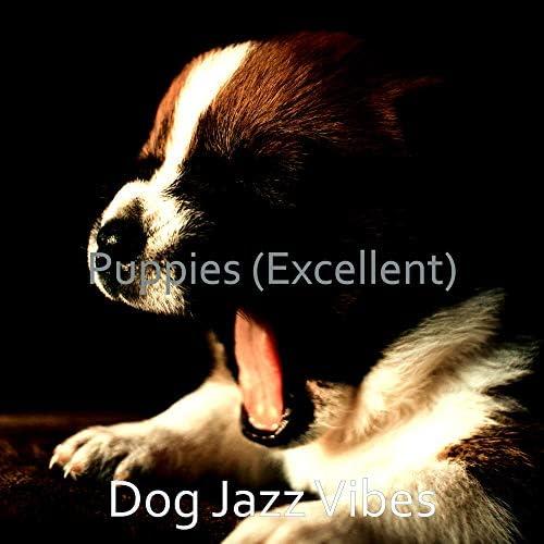 Dog Jazz Vibes