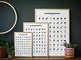 Saisonkalender Obst & Gemüse, Dekoration Küche: