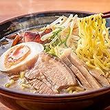 北海道ラーメン 熟成生麺タイプ 5食入 スープが5種類付いた お得な食べくらべセット