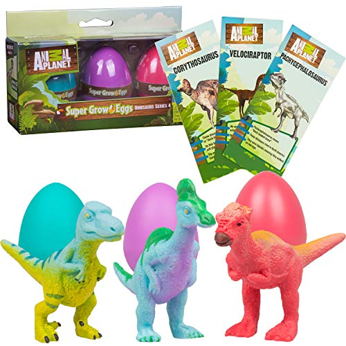 Animal Planet Super Grow Dinosaur Eggs 3 Pack - Toys Hatch and Grow to 3x Size in Water - Velociraptor, Pachycephalosaurus, & Corythosaurus - Includes Dino Educational Fact Cards