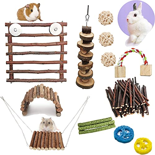 PStarDMoon Hamster Chew Toys, Natural Apple Wooden Door, Hanging Swing and Arch Bridge Toys for Rabbit Bunny Chinchilla Guinea Pigs or Other Rodent Pets (Style...