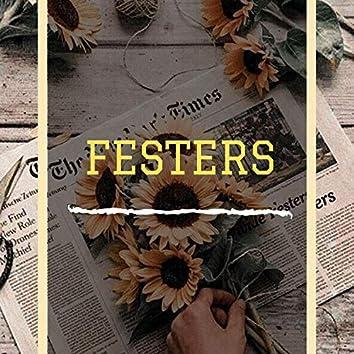 Festers