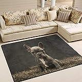 Use7 Teppich, Motiv: Französische Bulldogge Welpe, Vintage-Teppich, für Wohnzimmer, Schlafzimmer, Textil, multi, 160cm x 122cm(5.3 x 4 feet)