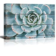 wall26 Green and Blue Succulent - Rustic Floral Arrangements - Pastels Colorful Beautiful - Wood Grain Antique - Canvas Art Home Art - 24x36 inches
