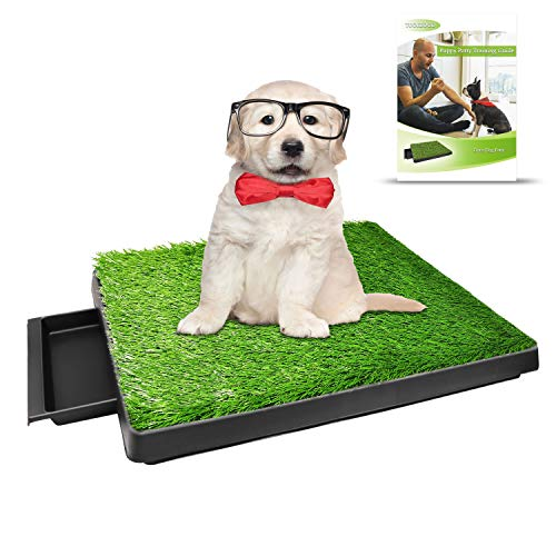 TUOKEOGO Dog Grass Pad with Tray, Puppy Potty Training Grass, Indoor Dog Potty with Training Guide-Medium Small Dog-25'x20' (Dog Potty with 1 Turf)