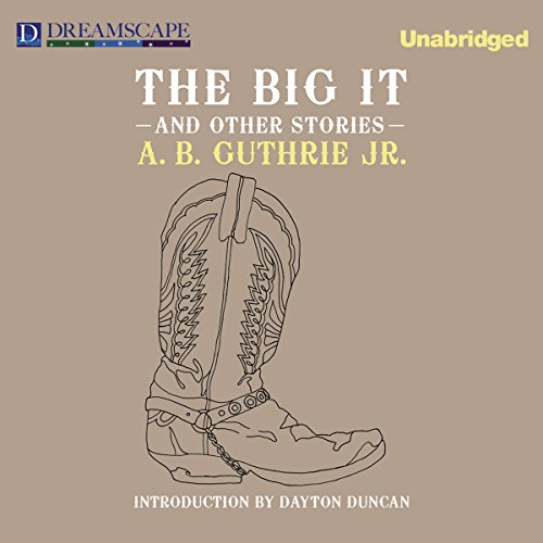 The Big It audiobook cover art