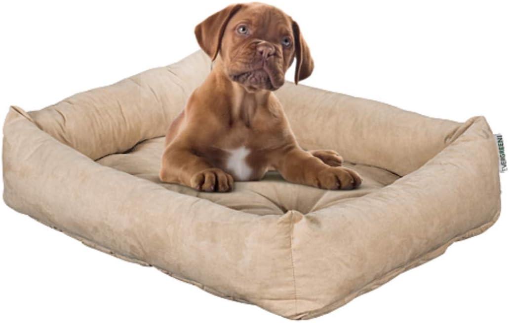 Evergreenweb Cama para Perro, Beige 65x85 Sofá para Perro, Alfombrilla para Perro, Cesta para Perro, Acogedora Cama para Mascotas en la Habitación Borde Elevado, con Suave cojín Desmontable - Rex