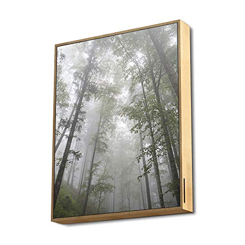 Energy Frame Speaker Altavoz con Bluetooth 5.0 y tecnología True Wireless (50W, USB/microSD MP3, FM, Diseño Exclusivo) - Forest