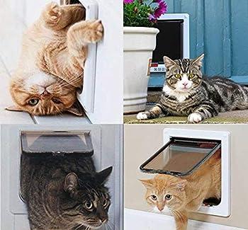 Sailnovo Chatière pour Chat Chatière magnétique avec verrou Rotatif à 4 Voies pour Chat (L: 18 x 19 x 5.5 cm, Blanc)