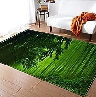 家具装飾ラグマットカーペット大型ランナーリビングルーム用ソフト/長方形/アンチスリップ印刷ホームベッドルームコーヒーテーブルモダンフロアマット(カラー:#4サイズ:100x150cm)