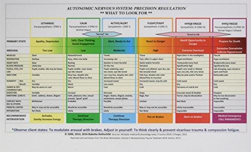 Autonomic Nervous System Table: Laminated Card