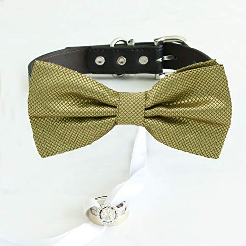 Pale Gold bow tie Ranking TOP13 collar Leather Popular products ring honor of dog bearer
