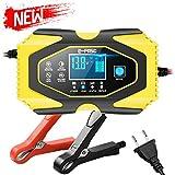 Directtyteam 12V6A 24V 3A Chargeur de Batterie de Voiture Batterie au Plomb-Acide au Lithium Chargeur de Batterie de Voiture Universel
