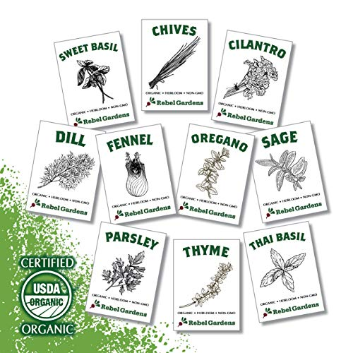 Rebel Gardens Organic Herb Seeds – USA Grown Non GMO Heirloom Seed for Planting Indoors or Outdoors Garden (10 Culinary Variety Pack)