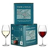 Bag in box 5L Vin rouge italien MERLOT IGT Venezia Giulia + BIB 5L Vin Blanc PINOT GRIGIO IGT Friuli Italie (Vigne di giulia Bag in Box)