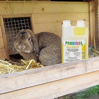 Probisa Désodorisant contre les odeurs d'urine de chat, de chien, de rongeurs et d'animaux domestiques (concentré pour 50 litres de produit nettoyant bio prêt à l'emploi