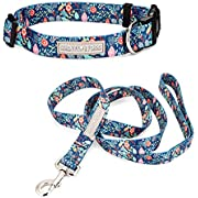 Lucky Love Dog Dog Collar, Leash Set Small, Medium, Large, Premium, Cute and Adjustable Collars for Male and Female Dogs, SweetHoliday Combo, Extra Small