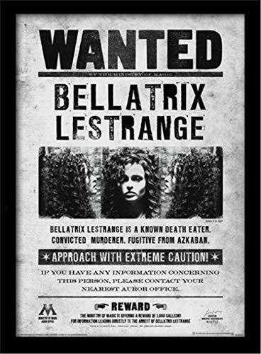 HARRY POTTER Memorabilia enmarcada, Bellatrix Wanted, 30 x 40cm