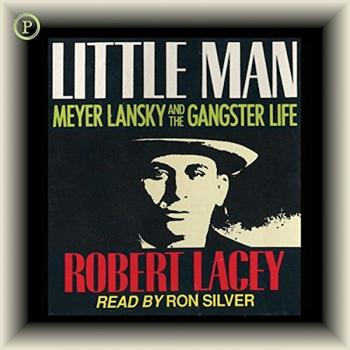 Little Man audiobook cover art