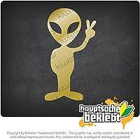 エイリアンピース Alien Peace 20cm x 11cm 15色 - ネオン+クロム! ステッカービニールオートバイ