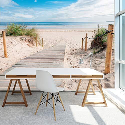 murimage Papel Pintado Mar Playa 3D 366 x 254 cm Incluye Pegamento Fotomurales Duna Vista Sendero Ola Sol Cocina baño