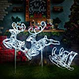 Light Up Christmas Double Reindeer and Sleigh Lawn Ornament, Waterproof LED Lights Indoor Outdoor,...
