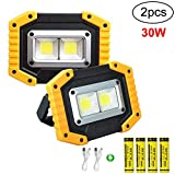 longdafei 2-Pack Portable LED Work Light, Rechargeable Floodlights with USB,Spotlight Waterproof Outdoor for...