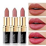 CCbeauty 3pcs Moisturizing & Matte Makeup Lipsticks Set Matte Lipstick Long Lasting,Soft Nudes Velvet Lip Sets