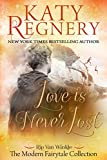 Love is Never Lost: (inspired by 'Rip Van Winkle') (A Modern Fairytale) (English Edition)